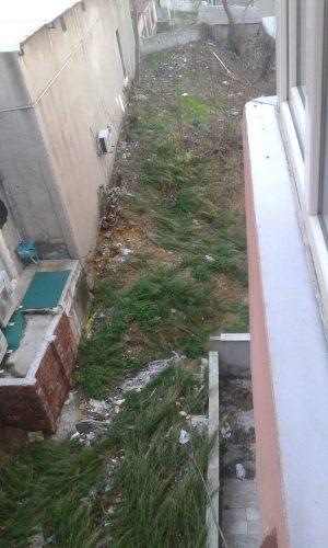 evimin arka bahçesi 2