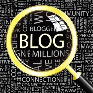 Kişisel blog eleştirileri