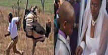 Afrika Kıtası'ndaki En Tuhaf Yasalar