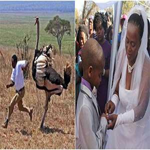 Afrika'daki Tuhaf Yasalar