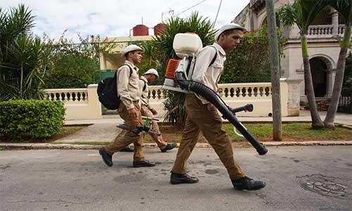 Küba Zika Virüsü