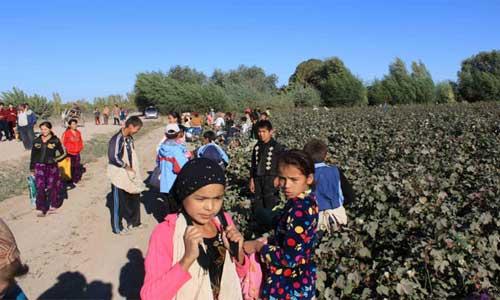 Özbekistan'daki Köleler