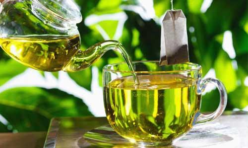 Yeşil Çay Hakkında